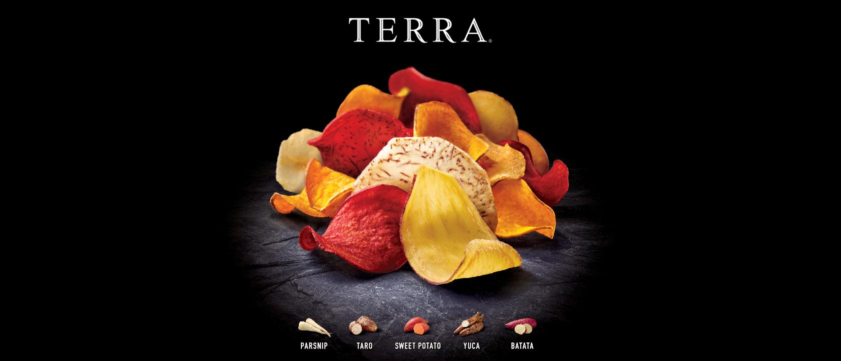 terraheader-copy-001